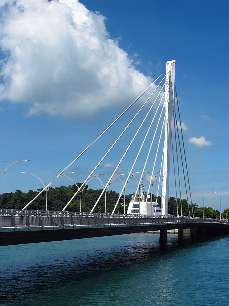 cable stayed bridge thesis Time domain buffeting analysis of large-span cable-stayed bridge shuxian hong a thesis submitted to faculty of engineering of university of porto in.