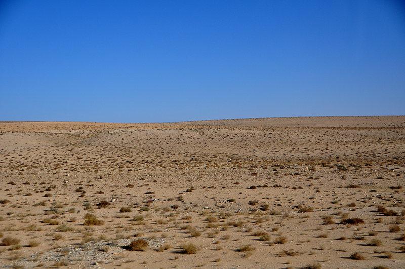 Desert essays