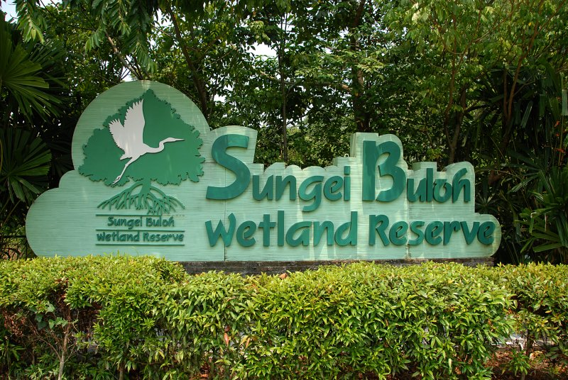 Sungei Buloh